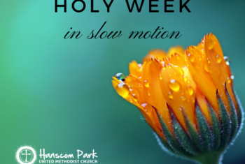 picture of flower with words holy week in slow motion