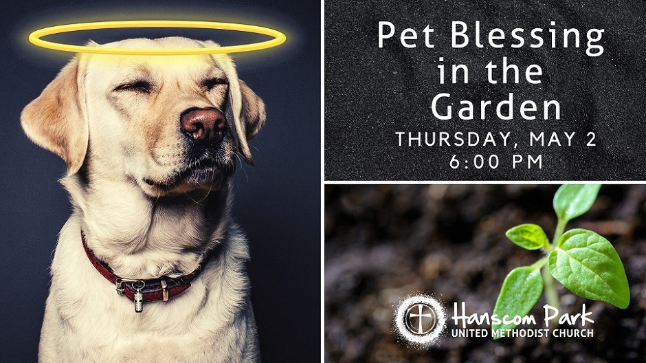 image of dog with halo and wording pet blessing in the garden may 2 at  6 pm