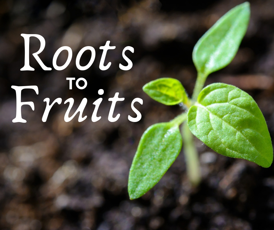 image of small plant and wording roots to fruits