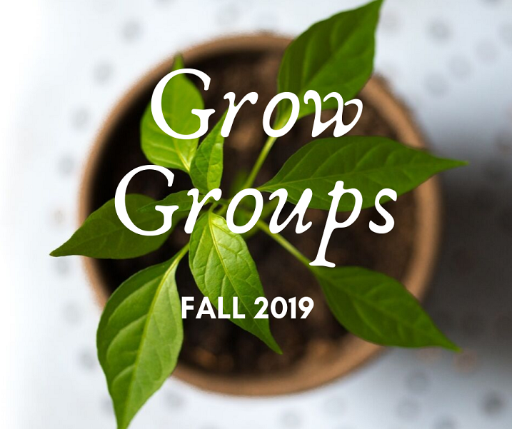image of plant with words grow groups fall 2019