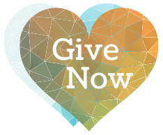 button with a heart and text that says give now